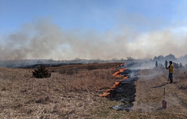 Growing Season Burn Workshop
