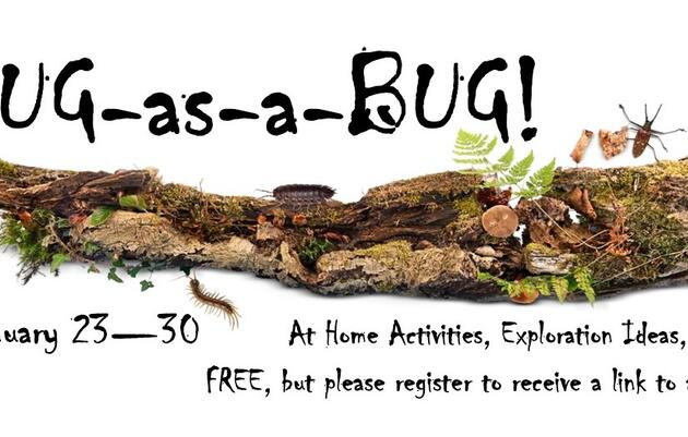 Snug-as-a-Bug!