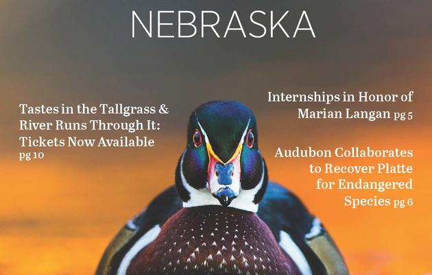 Audubon Nebraska newsletter