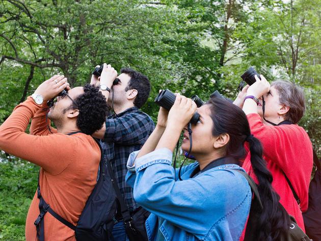 Bringing Diversity to Birding