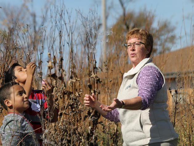 Spring Creek Prairie Audubon Center Looking for more Discovery Leaders